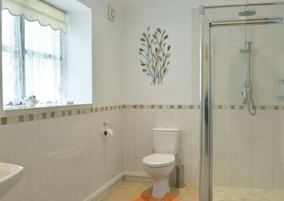 The ground floor shower room at Hayscastle Farmhouse, Hayscastle