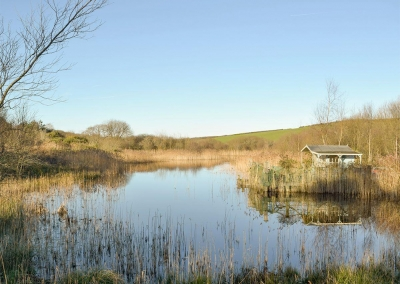 Five acres of natural grounds & a lake surround Ty Hapus, Dwrbach